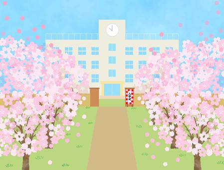 桜の季節 お祝い イベント 壁紙 1