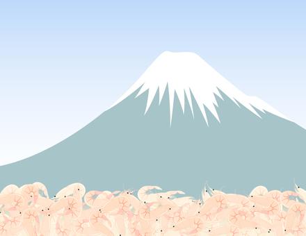 후지산과 벚꽃 새우 _ 벚꽃 새우 후지산