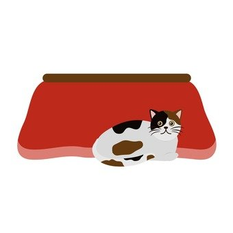 Kotatsu and cat