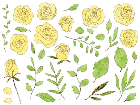 Rose and grass yellow