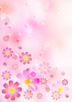 Cosmos _ pink background _ vertical