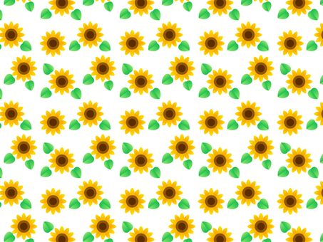 Sunflower and leaf background (white background)