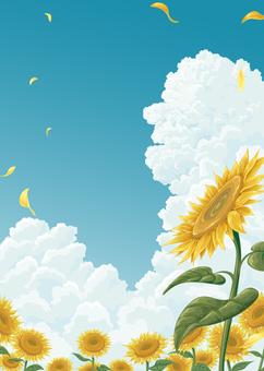 向日葵領域和接近雲彩