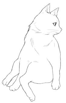 A cat facing sideways