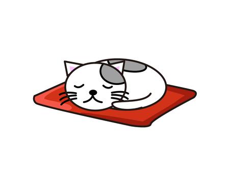 Sleeping cat white
