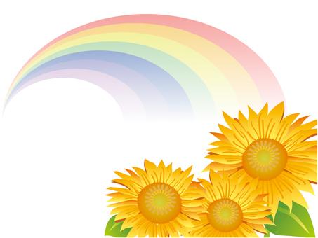 虹とひまわり-2
