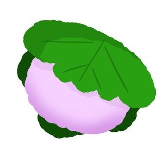 柏 餅 1