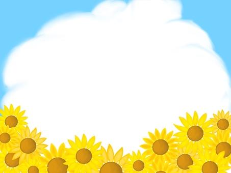 Frame-sunflower