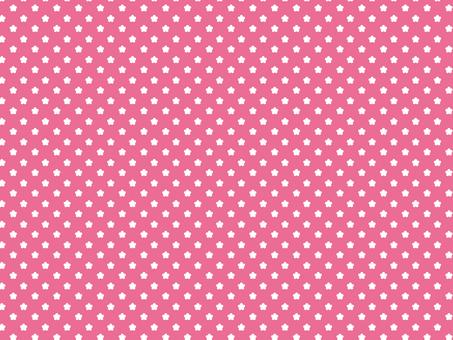 꽃 도트 핑크 패턴