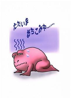消息青蛙2