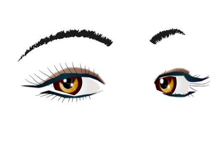 Eye collection 70