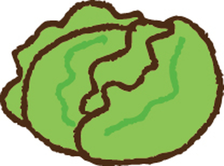 Cabbage · Lettuce