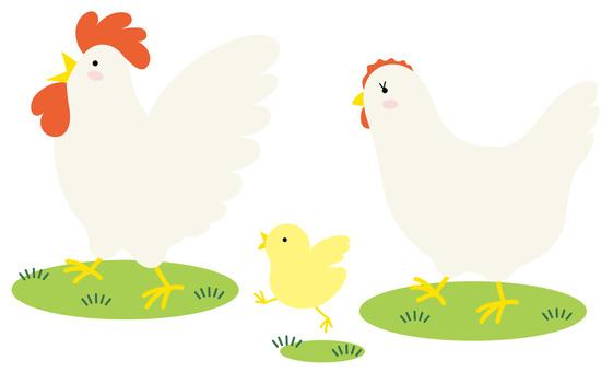 Chicken family 2