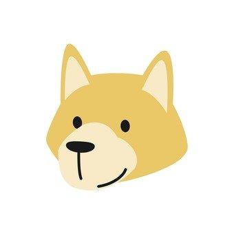 Dog - Dog's face