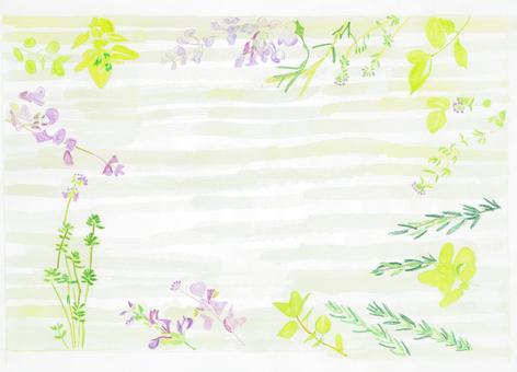 Herbal postcard