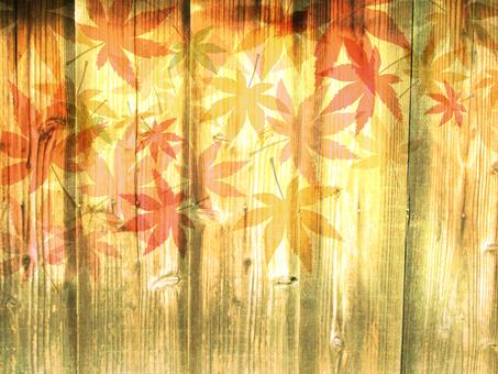 Wood grain 椛 background 16101601