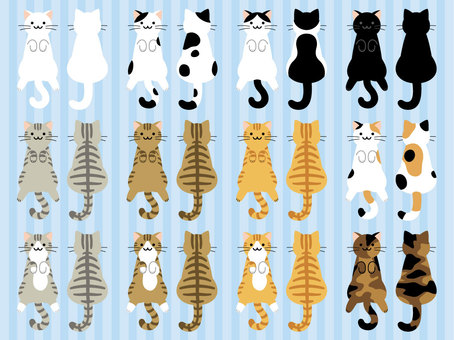 Various sets of cat's hair color