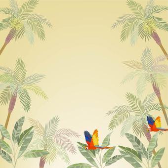 Tropical image 2