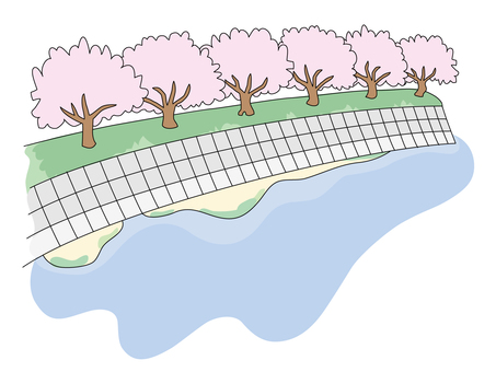 Cherry blossoms on the river
