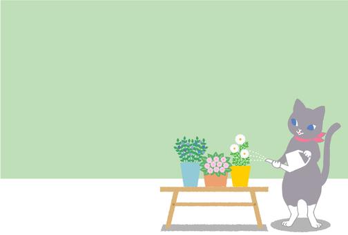 Gardening - watering