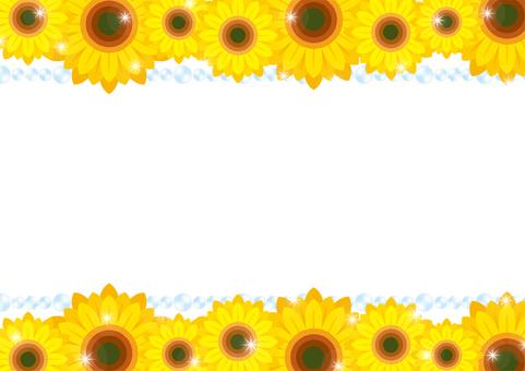 Sunflower background 1