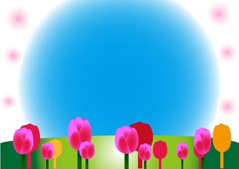 Tulip's space