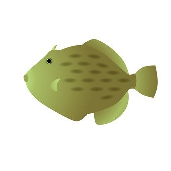 Seafood - Kawahagi