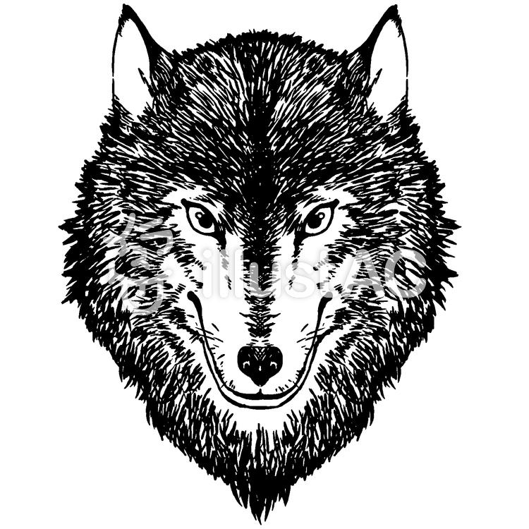 狼男のイラストハロウィン2カラー イラストくん