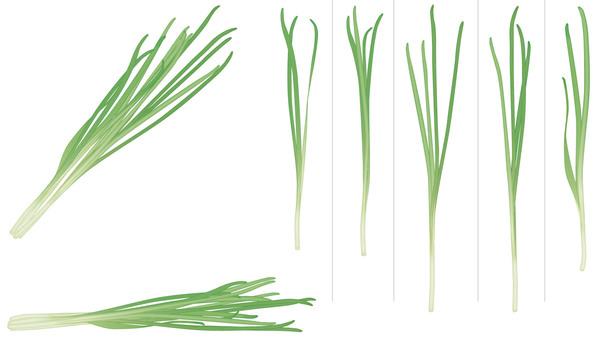 Nila / vegetable