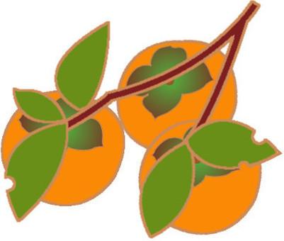 柿子 - 分支1