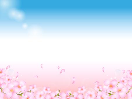 Cherry background 6