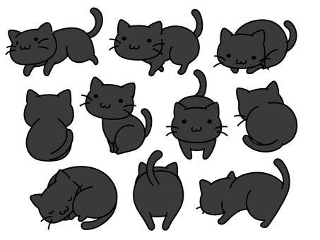 Deformed black cat