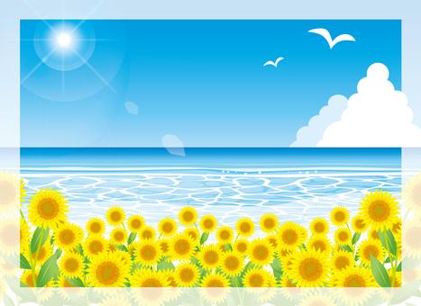 Sunflower and summer sea sunlight