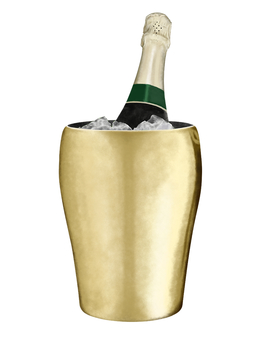 Wine bottle wine cooler