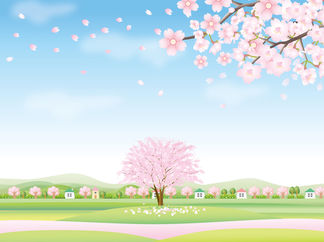 Spring landscape with cherry blossoms in full bloom Part 3