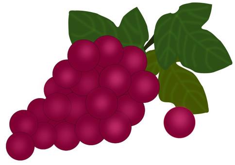 Autumn grapes 01
