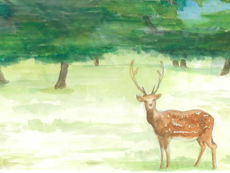 A watercolor standing in front of trees