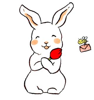 봄의 토끼