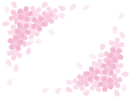 Sakura 13