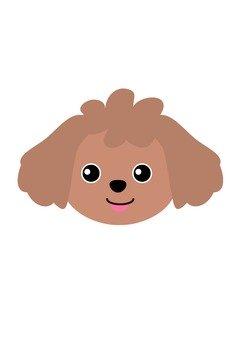 Dog 41