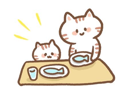 Cat rice