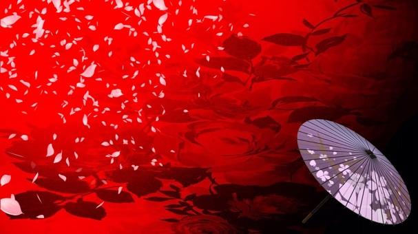 Fan umbrella background (red x purple)