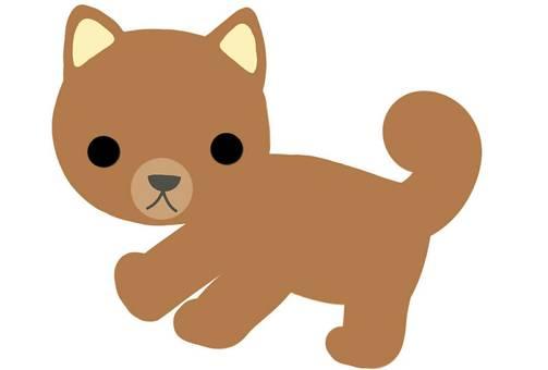 개 시바 강아지 애완 동물