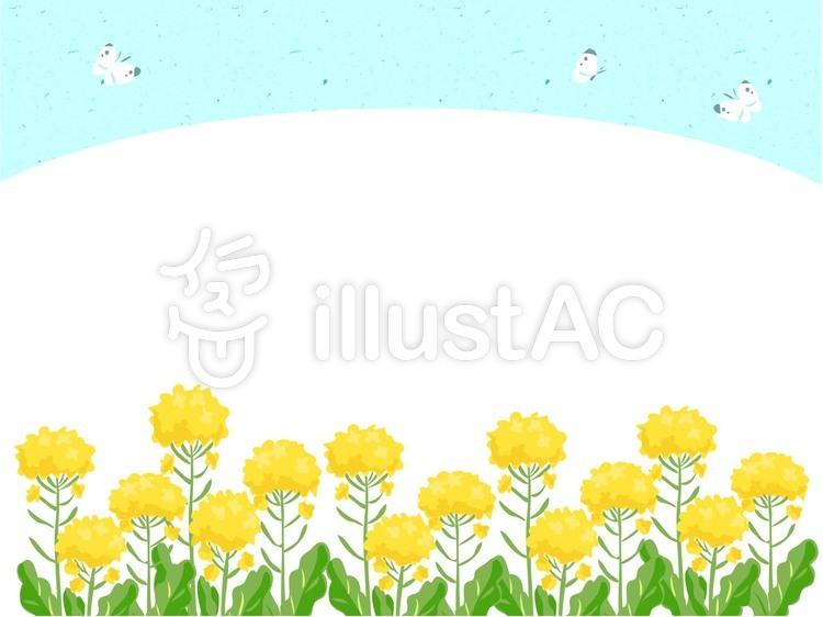 菜の花畑イラスト No 704919無料イラストならイラストac