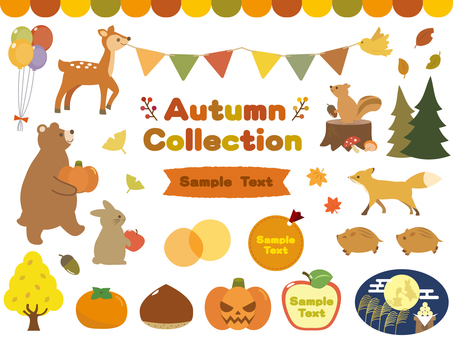 Autumn Material Collection 1