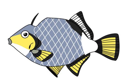 Sesame triggerfish