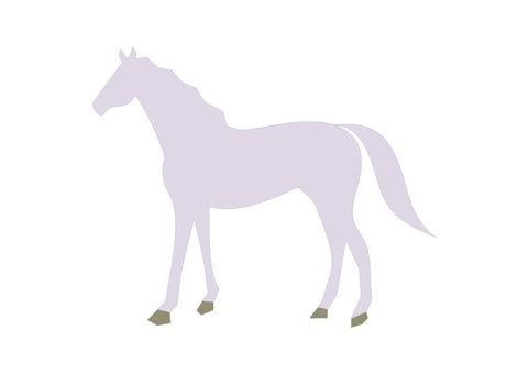 Horse (white horse)