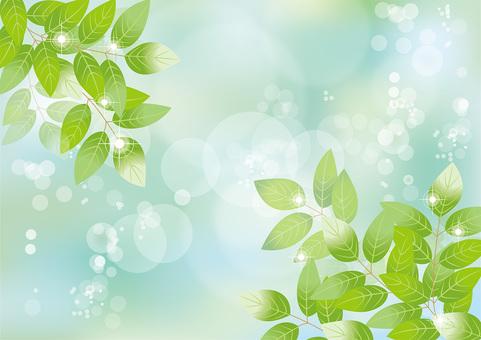 Glittering leaves & sky 120