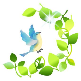 Fresh green and birds