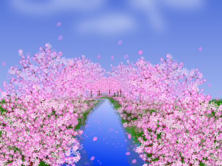 River and cherry blossom trees